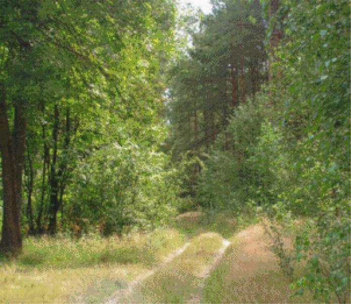 """""""Droga przez las"""" Pierwszy tegoroczny obraz. Haftowałem 10 miesięcy 150 odcieni nici DMC 80000 krzyżyków. Efekt mówi sam za siebie!!!"""